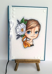ladynotebook